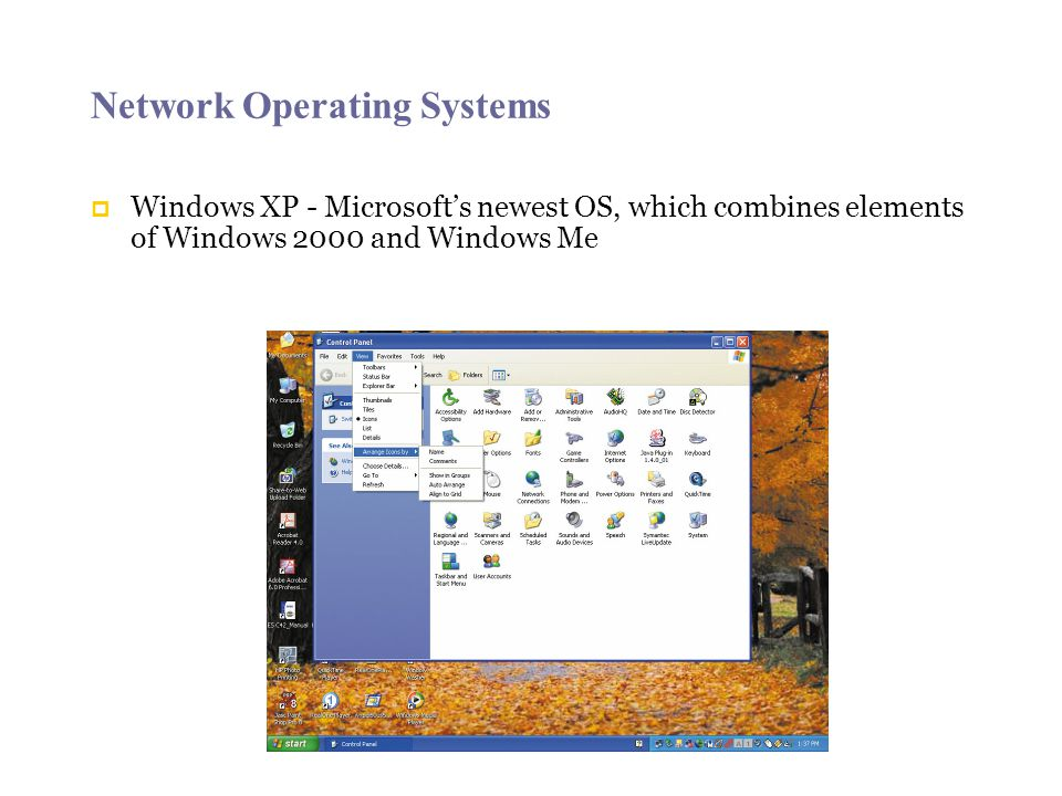 Network Operating Systems  Windows XP - Microsoft's newest OS, which combines elements of Windows 2000 and Windows Me