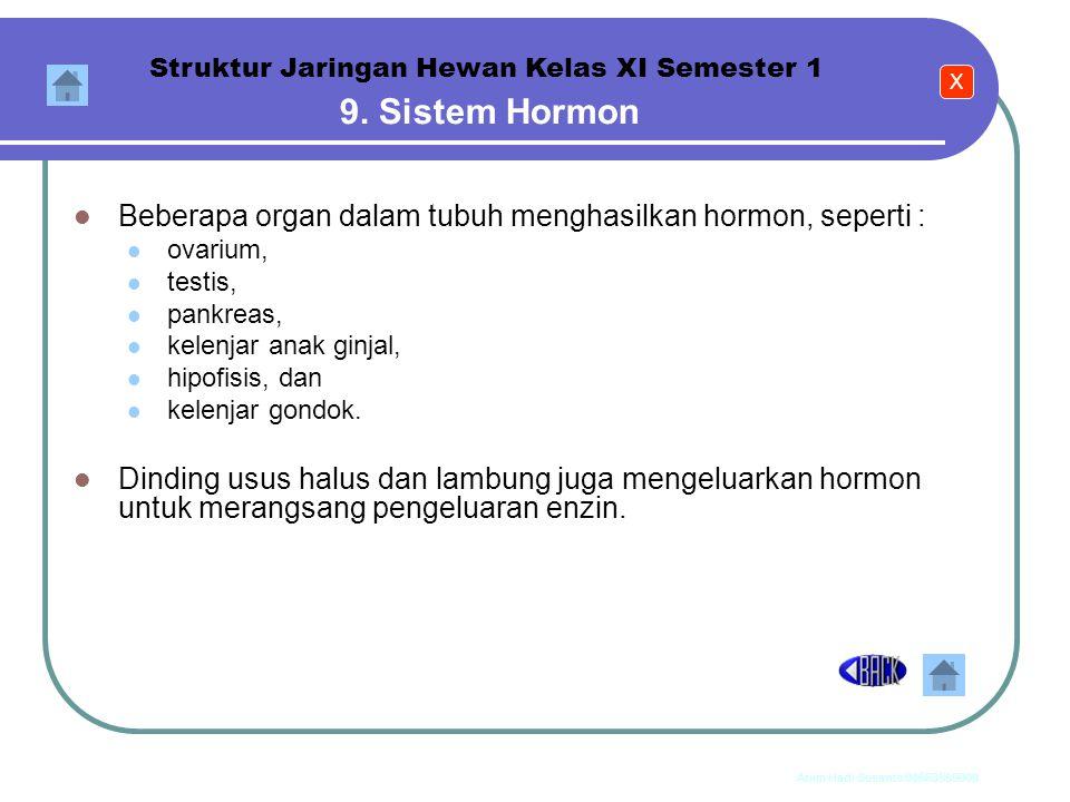 Anim Hadi Susanto 08563559009 8. Sistem Ekskresi Struktur Jaringan Hewan Kelas XI Semester 1 Organ sistem ekskresi, meliputi : kulit (kelenjar keringa