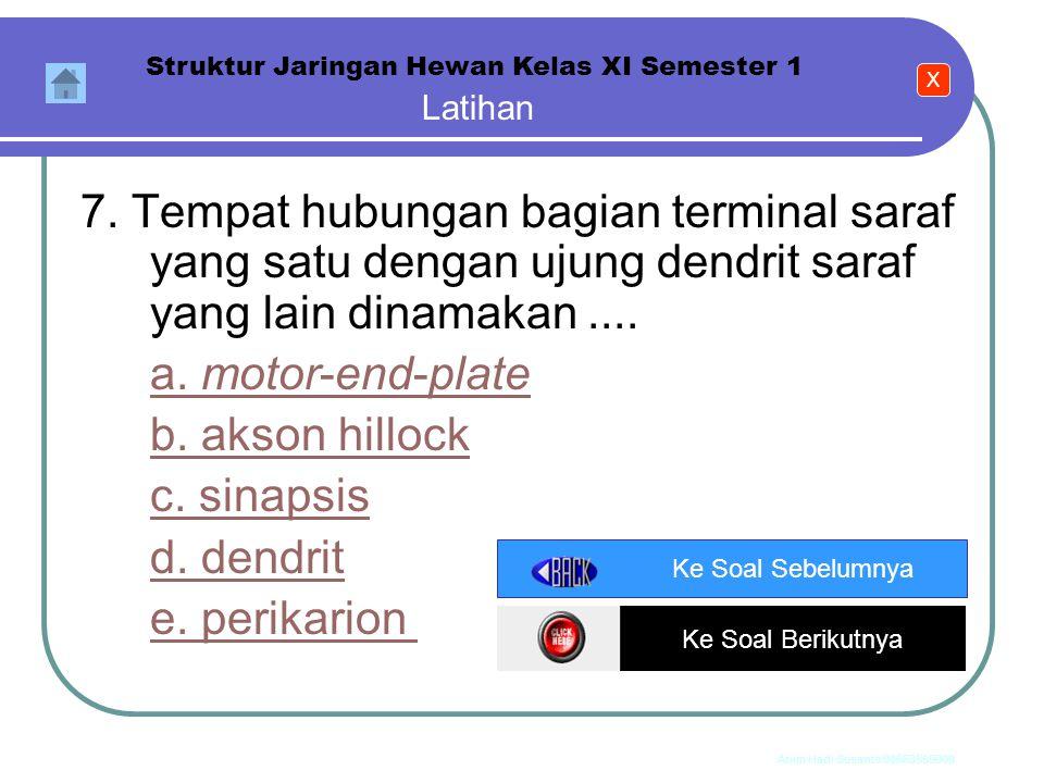 Anim Hadi Susanto 08563559009 Latihan Struktur Jaringan Hewan Kelas XI Semester 1 6. Hal-hal berikut ini merupakan pembeda antara otot lurik dengan ot