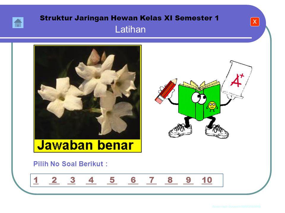 Anim Hadi Susanto 08563559009 Latihan Struktur Jaringan Hewan Kelas XI Semester 1 10. Bagian otot dengan tulang dihubungkan oleh jaringan ikat padat y