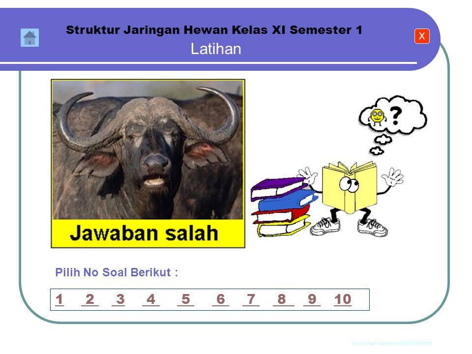 Anim Hadi Susanto 08563559009 Latihan Struktur Jaringan Hewan Kelas XI Semester 1 Ke Soal Berikutnya Pilih No Soal Berikut : 11 2 3 4 5 6 7 8 9 10 2 3
