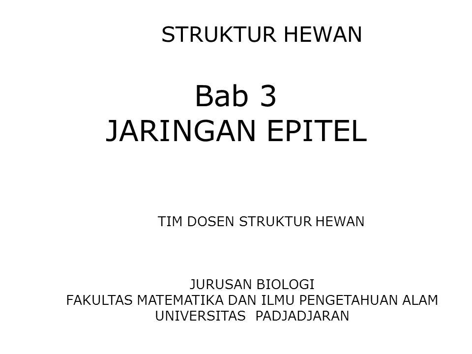 STRUKTUR HEWAN Bab 3 JARINGAN EPITEL TIM DOSEN STRUKTUR HEWAN JURUSAN BIOLOGI FAKULTAS MATEMATIKA DAN ILMU PENGETAHUAN ALAM UNIVERSITAS PADJADJARAN