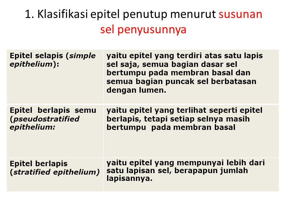 1. Klasifikasi epitel penutup menurut susunan sel penyusunnya Epitel selapis (simple epithelium): yaitu epitel yang terdiri atas satu lapis sel saja,