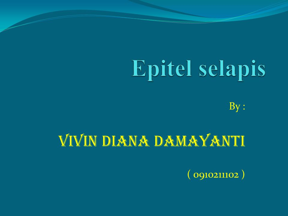 By : VIVIN DIANA DAMAYANTI ( 0910211102 )