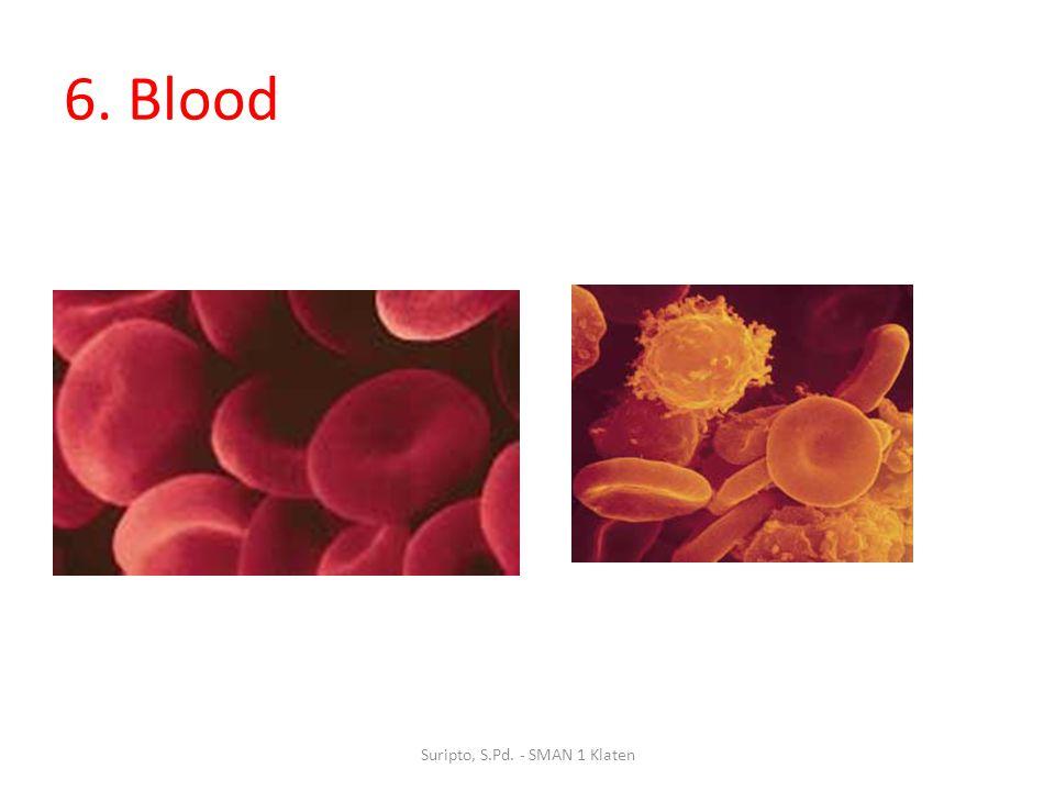 6. Blood Suripto, S.Pd. - SMAN 1 Klaten