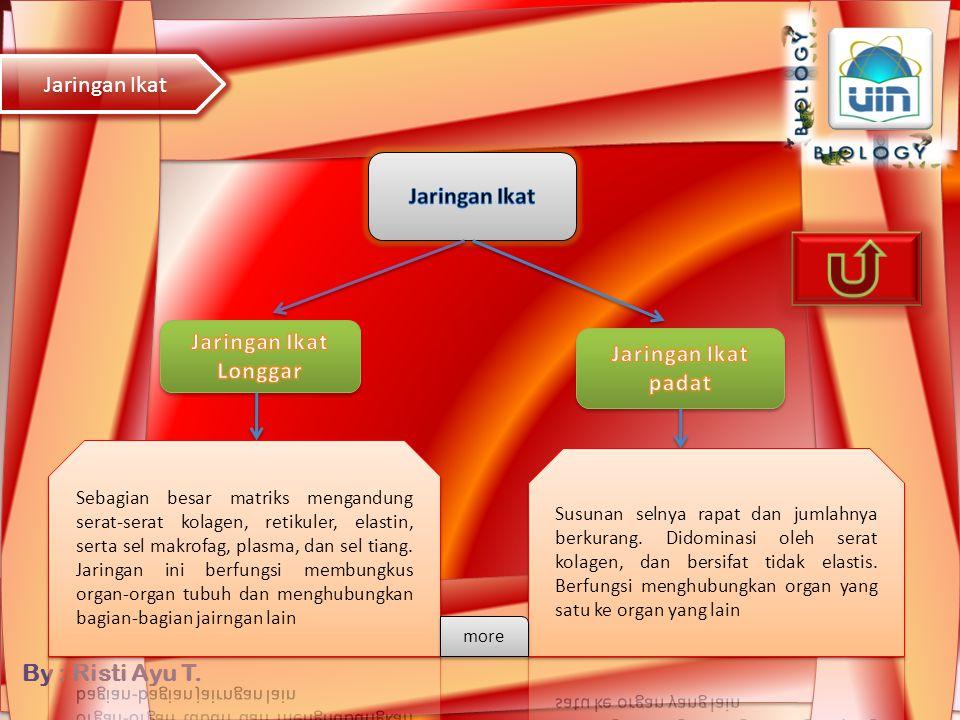 By : Risti Ayu T. Sel lemak Makrofag Plasma sel Back to Gambar (klik) Back to Gambar (klik) Komponen bahan dasar