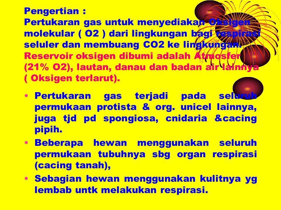 Pengertian : Pertukaran gas untuk menyediakan Oksigen molekular ( O2 ) dari lingkungan bagi respirasi seluler dan membuang CO2 ke lingkungan. Reservoi