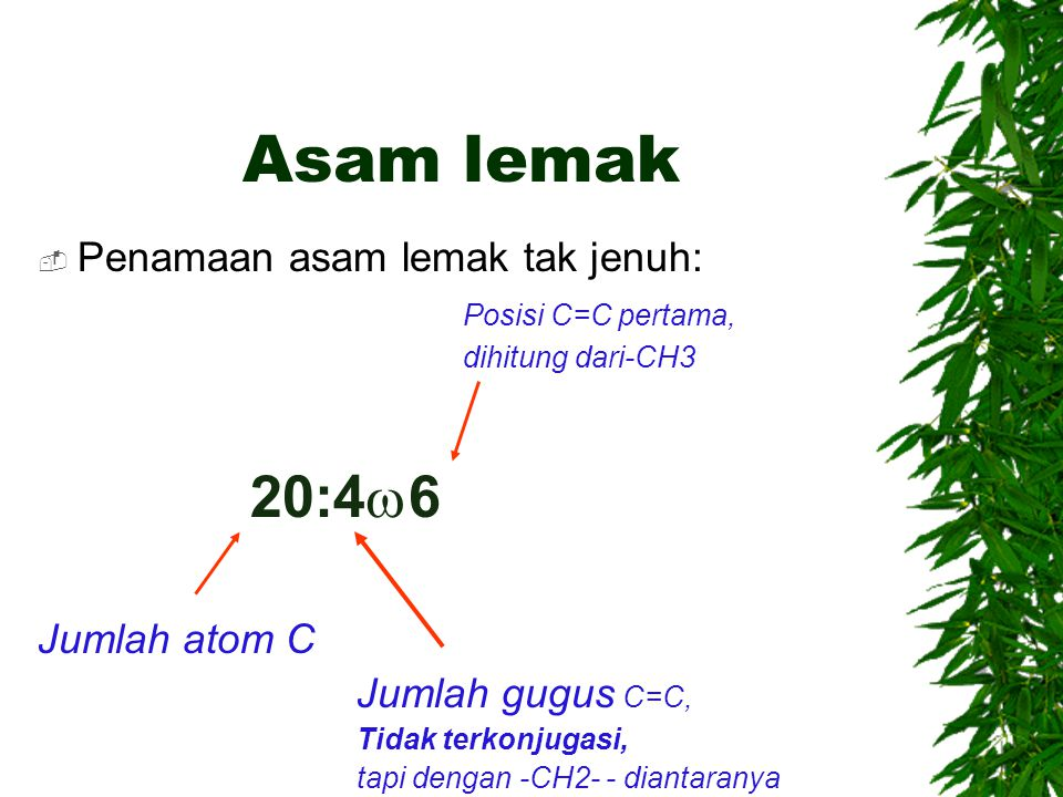 Asam lemak  Penamaan asam lemak tak jenuh: Posisi C=C pertama, dihitung dari-CH3 20:4  6 Jumlah atom C Jumlah gugus C=C, Tidak terkonjugasi, tapi de