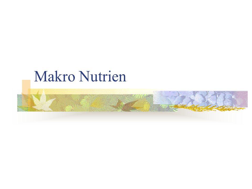 Disakarida-Maltosa Struktur: Jarang diproduksi oleh tanaman, hasil hidrolisis tepung oleh enzim  -amilase (bakteri Bacillus), merupakan senyawa antara pada proses fermentasi.