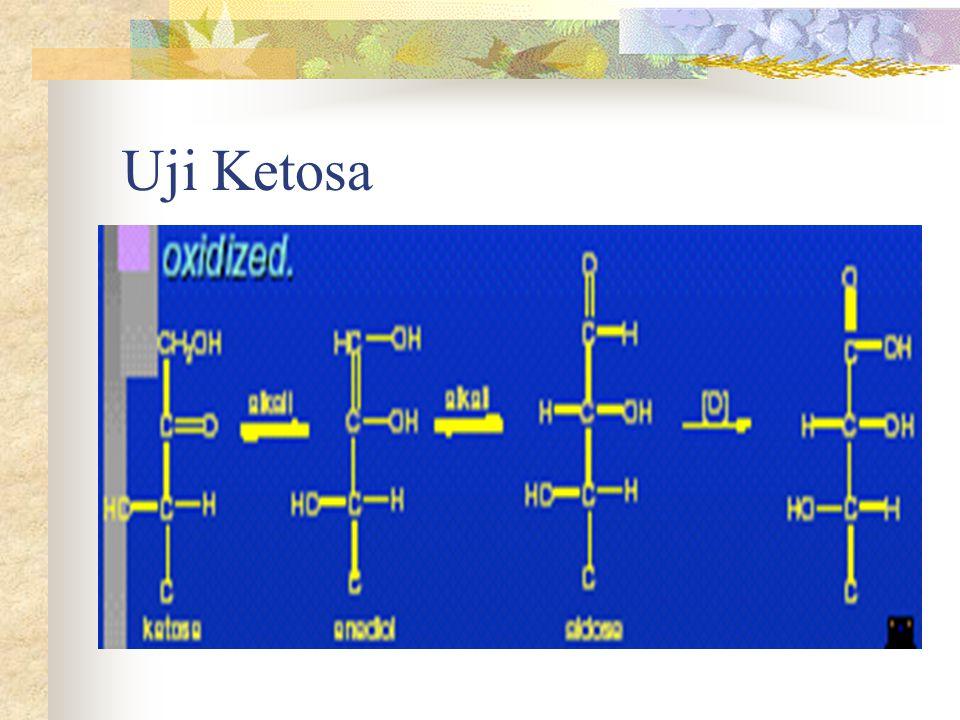 Uji Ketosa