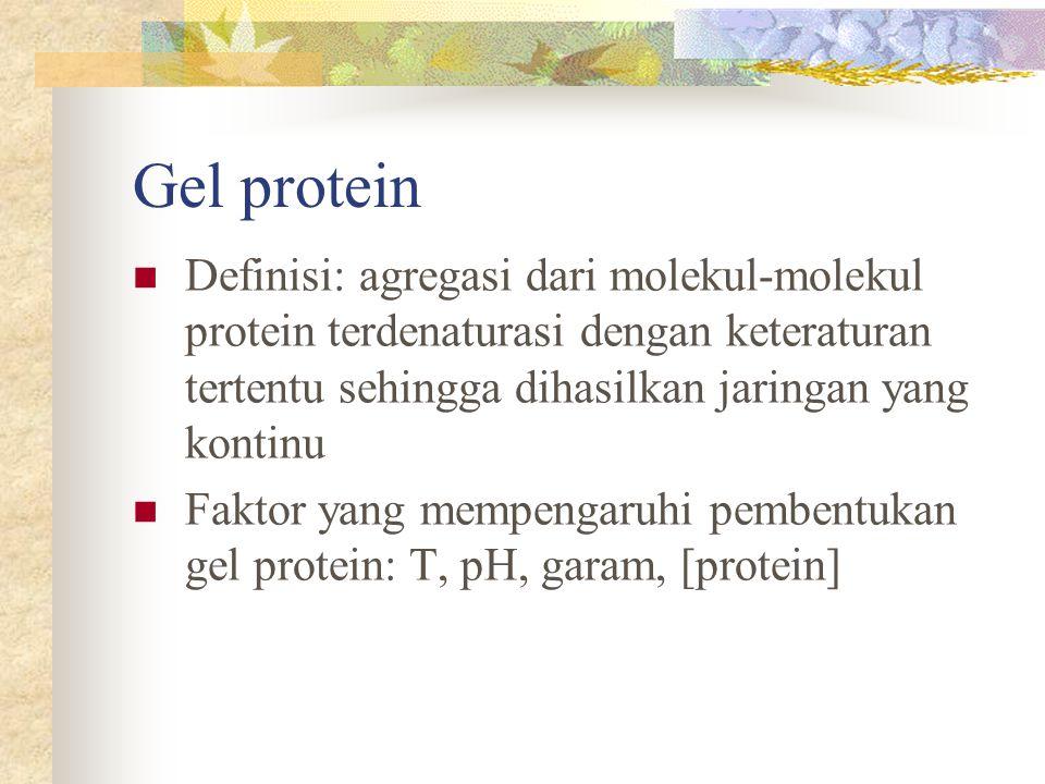 Gel protein Definisi: agregasi dari molekul-molekul protein terdenaturasi dengan keteraturan tertentu sehingga dihasilkan jaringan yang kontinu Faktor