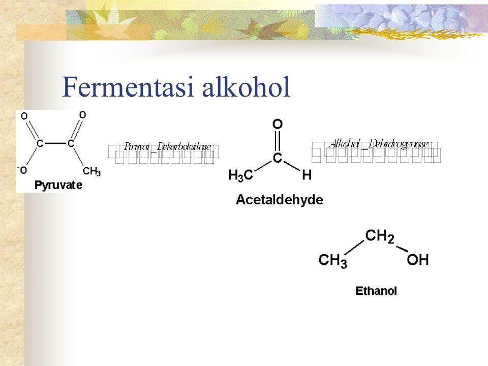 Pektin Sturuktur Pektin: polimer dari  -D-Galakturonat melalui ikatan  -1,4- glikosidik Beberapa gugus -COOH teresterifikasi dgn metanol (ester Metoksil ~7-12%, kec strawberi ~0.2%) Sifat & kemampuannya utk membentuk gel ditentukan oleh bentuk gugus asamnya : e.g: - COOH, -COOCH 3, keterikatannya dgn ion Ca 2+ & Mg 2+