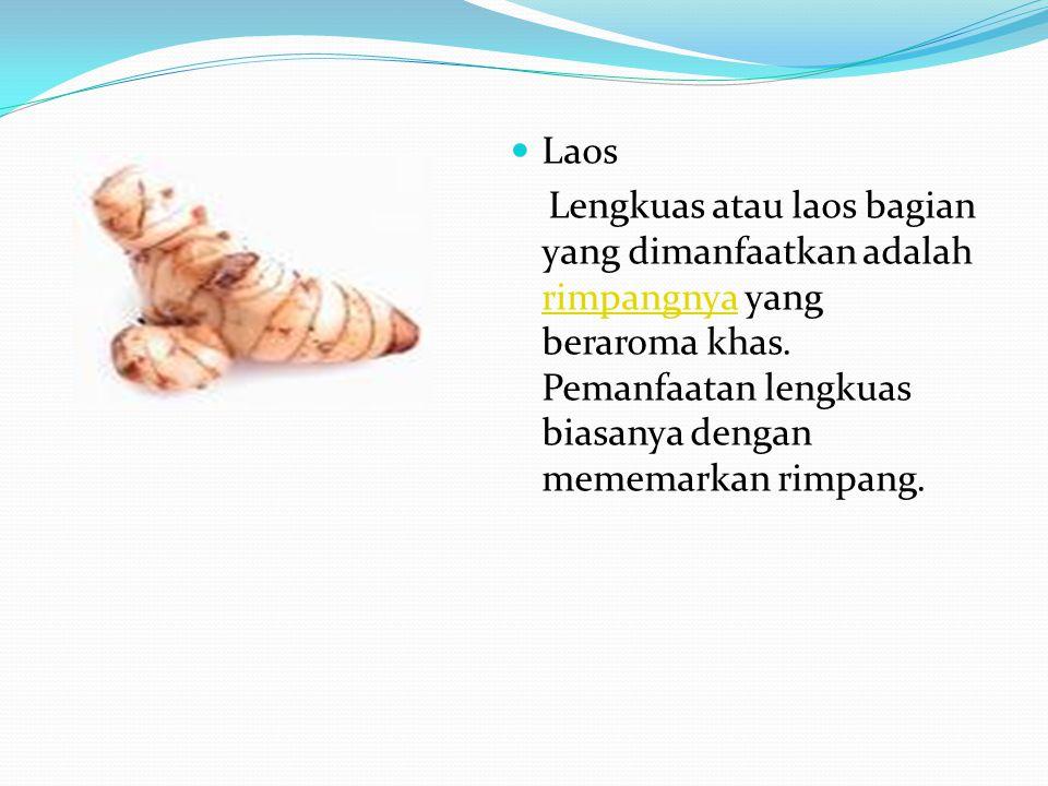 Laos Lengkuas atau laos bagian yang dimanfaatkan adalah rimpangnya yang beraroma khas. Pemanfaatan lengkuas biasanya dengan mememarkan rimpang. rimpan