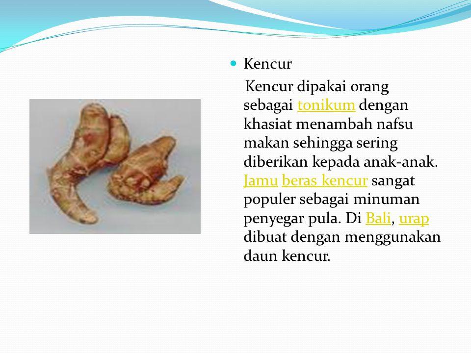Kencur Kencur dipakai orang sebagai tonikum dengan khasiat menambah nafsu makan sehingga sering diberikan kepada anak-anak. Jamu beras kencur sangat p