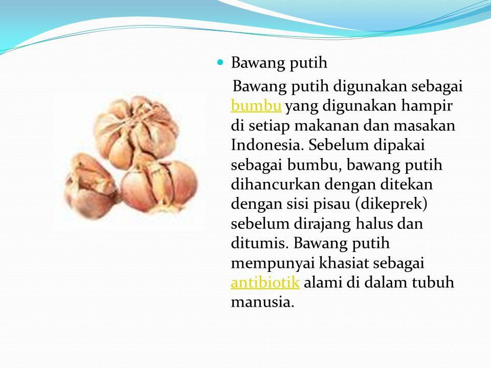 Bawang putih Bawang putih digunakan sebagai bumbu yang digunakan hampir di setiap makanan dan masakan Indonesia. Sebelum dipakai sebagai bumbu, bawang