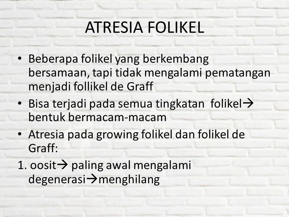 ATRESIA FOLIKEL Beberapa folikel yang berkembang bersamaan, tapi tidak mengalami pematangan menjadi follikel de Graff Bisa terjadi pada semua tingkata