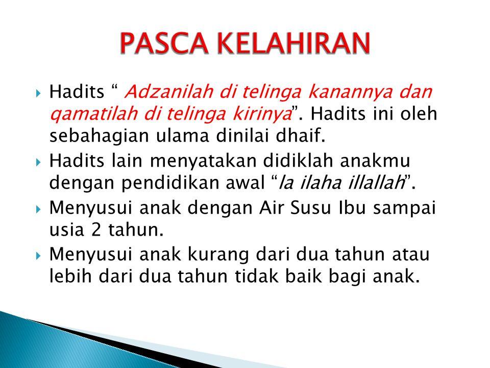 """ Hadits """" Adzanilah di telinga kanannya dan qamatilah di telinga kirinya"""". Hadits ini oleh sebahagian ulama dinilai dhaif.  Hadits lain menyatakan d"""