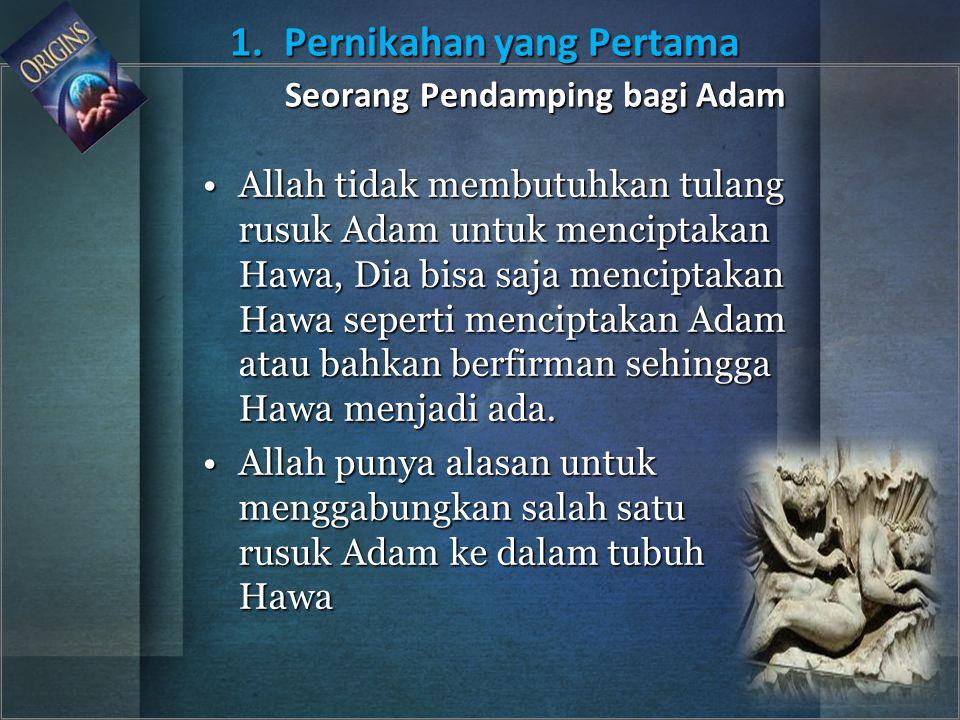Allah tidak membutuhkan tulang rusuk Adam untuk menciptakan Hawa, Dia bisa saja menciptakan Hawa seperti menciptakan Adam atau bahkan berfirman sehing