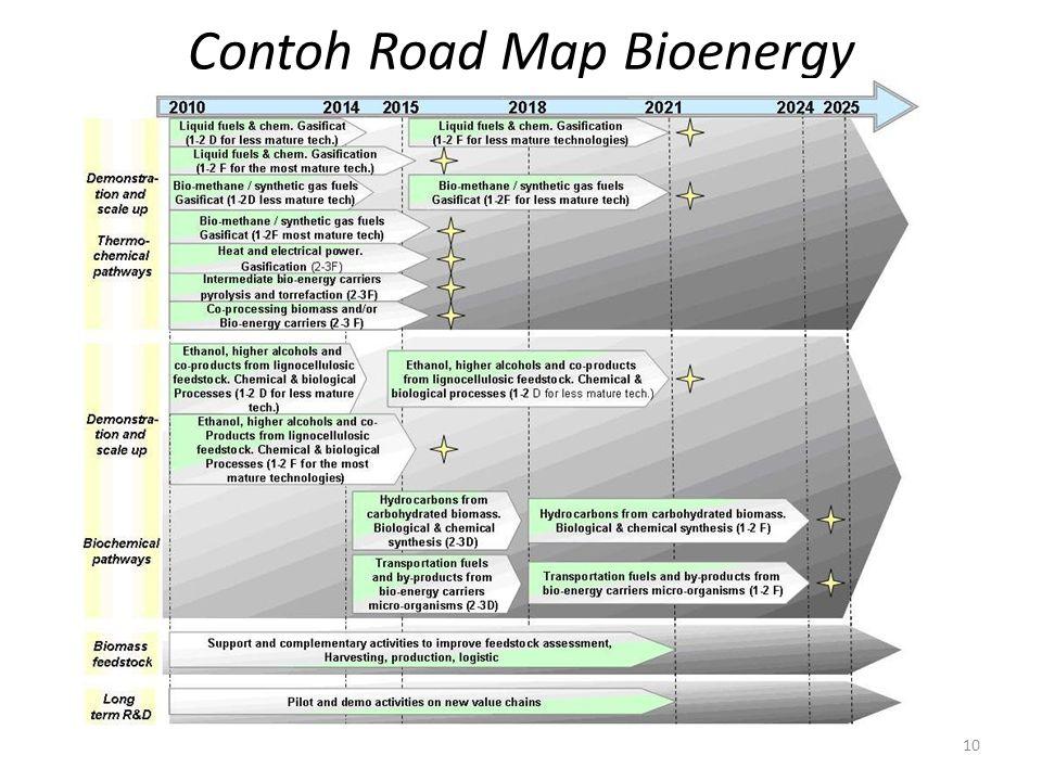 Contoh Road Map Bioenergy 10