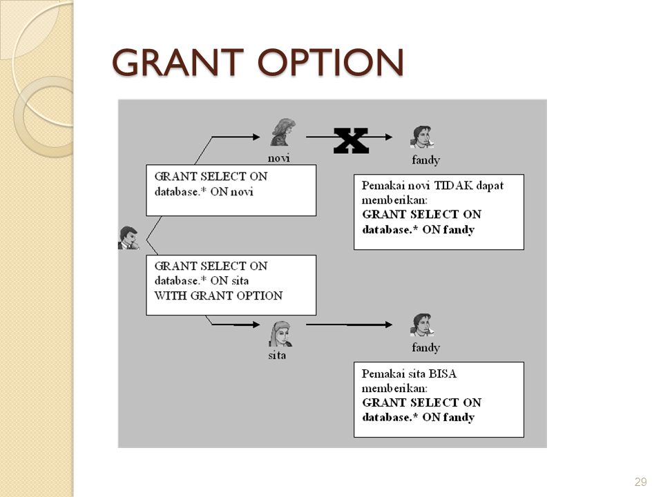 GRANT OPTION 29