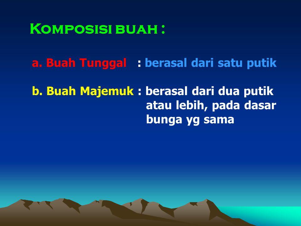 Komposisi buah : a. Buah Tunggal : berasal dari satu putik b. Buah Majemuk : berasal dari dua putik atau lebih, pada dasar bunga yg sama