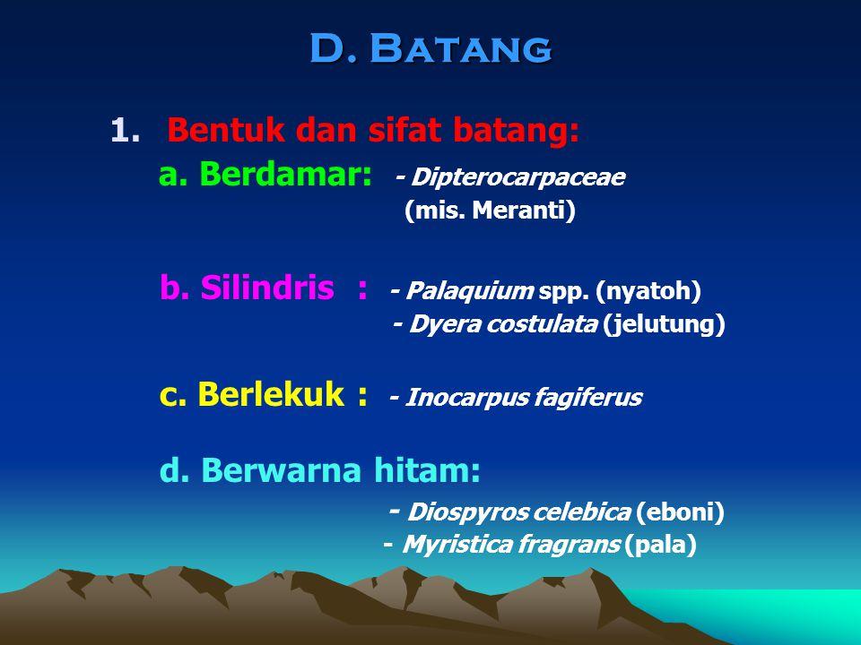 D. Batang 1.Bentuk dan sifat batang: a. Berdamar: - Dipterocarpaceae (mis. Meranti) b. Silindris : - Palaquium spp. (nyatoh) - Dyera costulata (jelutu