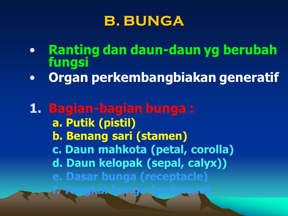 B. BUNGA Ranting dan daun-daun yg berubah fungsi Organ perkembangbiakan generatif 1.Bagian-bagian bunga : a. Putik (pistil) b. Benang sari (stamen) c.