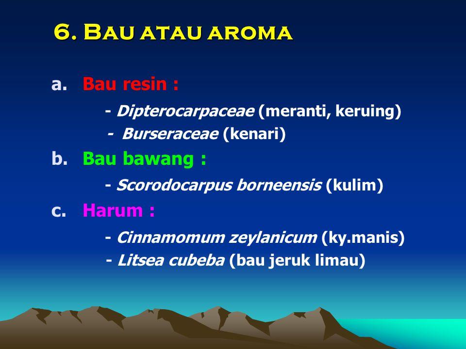 6. Bau atau aroma a.Bau resin : - Dipterocarpaceae (meranti, keruing) - Burseraceae (kenari) b.Bau bawang : - Scorodocarpus borneensis (kulim) c.Harum