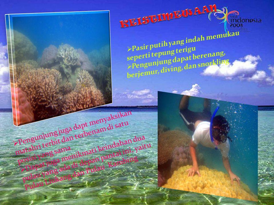 SELAYANG PANDANG Tanjung Bira merupakan pantai pasir putih yang cukup terkenal di Sulawesi Selatan Pantai ini termasuk pantai yang bersih, tertata rap