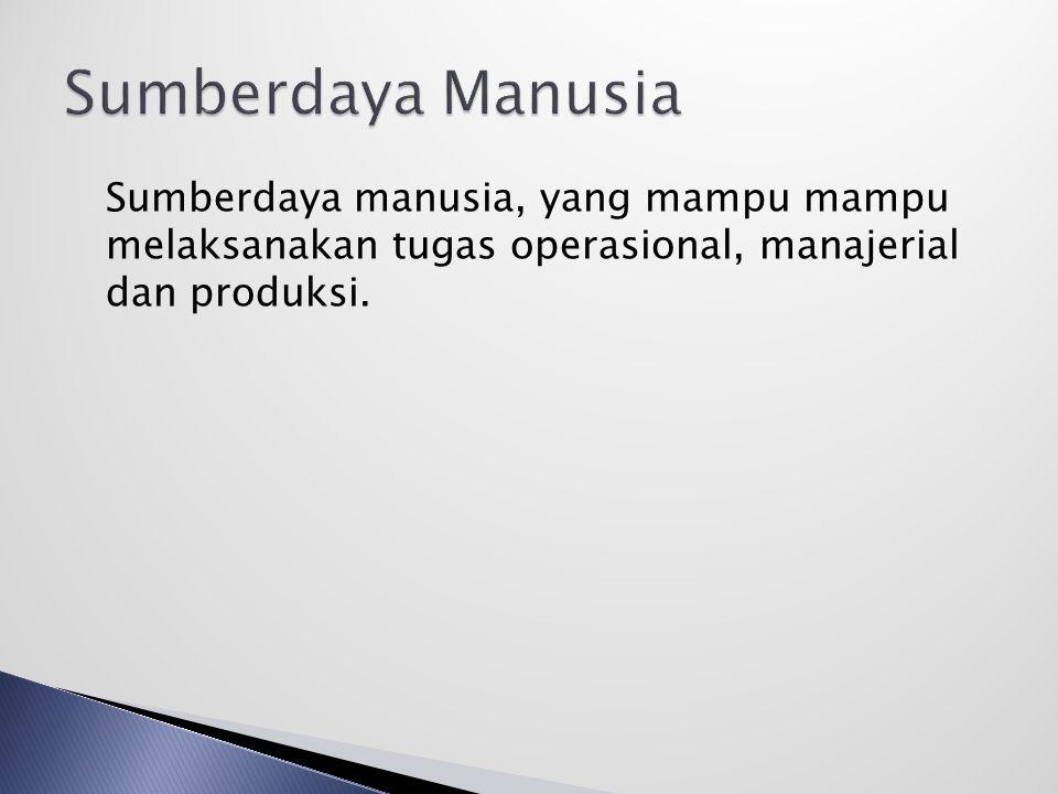 Sumberdaya manusia, yang mampu mampu melaksanakan tugas operasional, manajerial dan produksi.