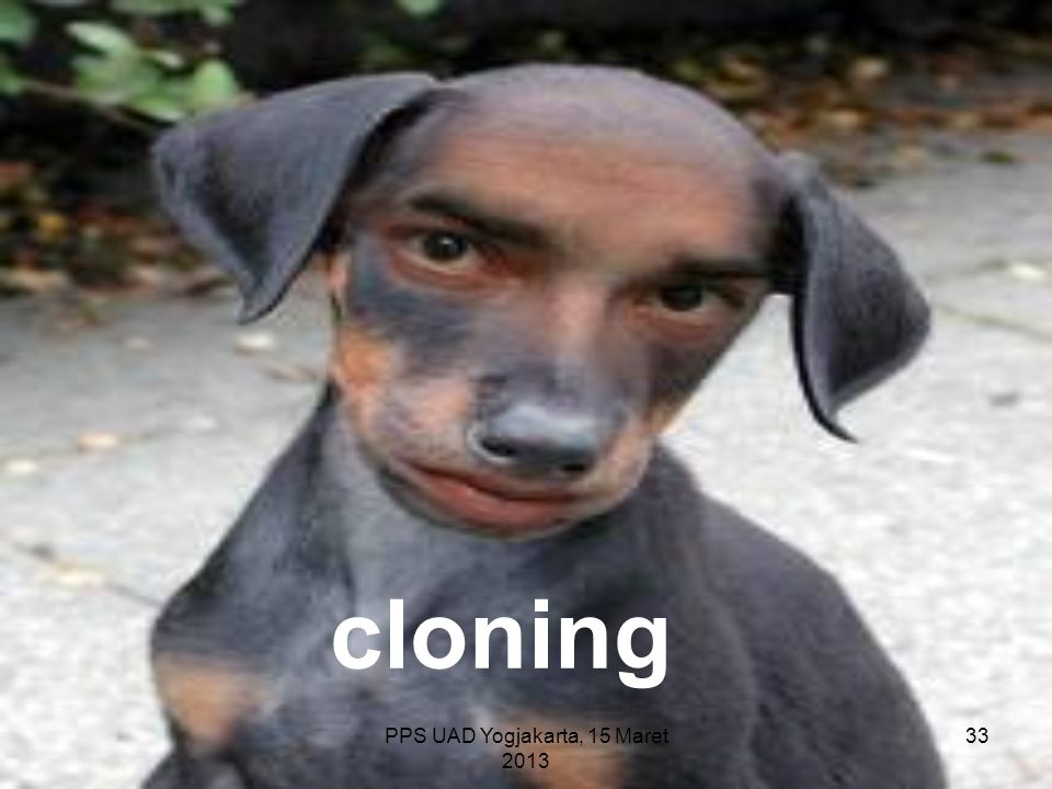 PPS UAD Yogjakarta, 15 Maret 2013 cloning 33