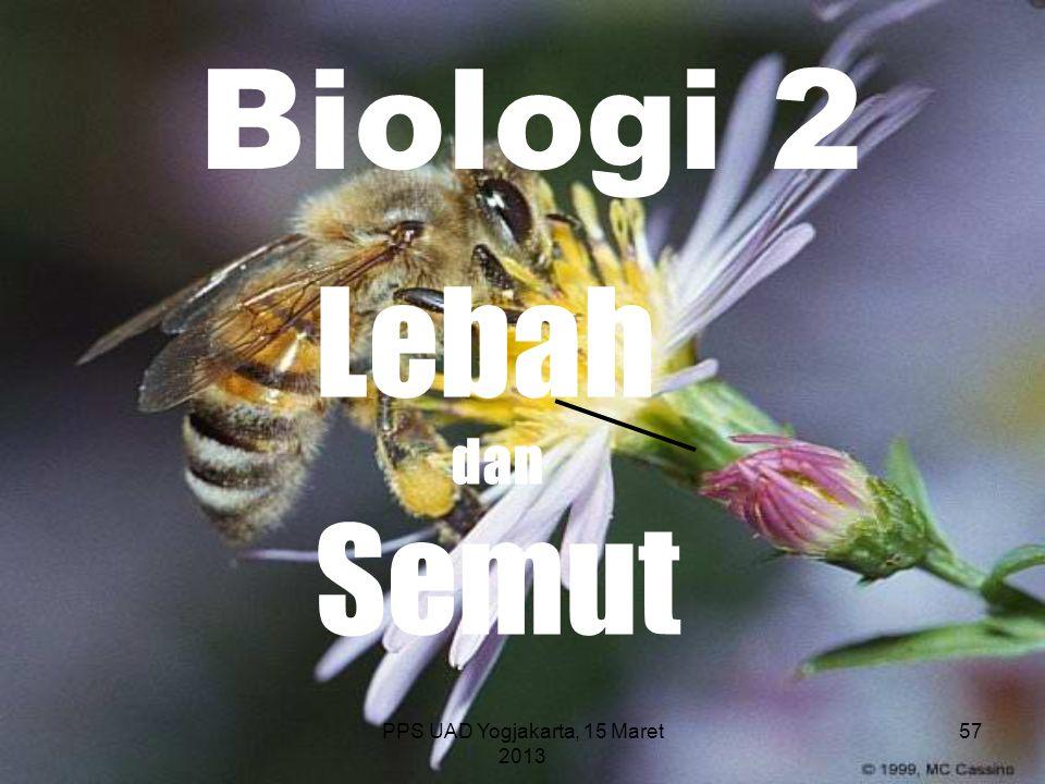 PPS UAD Yogjakarta, 15 Maret 2013 Biologi 2 Lebah dan Semut 57