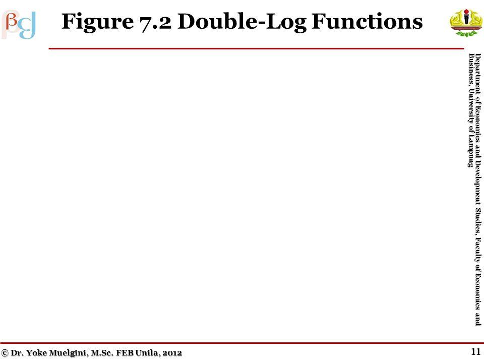 10 Double-Log Form © Dr.Yoke Muelgini, M.Sc.