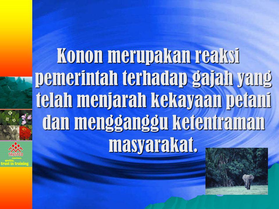Di zaman orde baru kita masih ingat tentang sekolah gajah di Lampung tepatnya di Way Kambas.