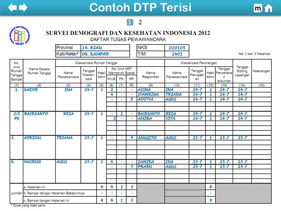 100% SDKI 2012 100% Contoh DTP Terisi m