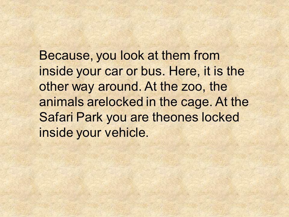 Because, you look at them from inside your car or bus. Here, it is the other way around. At the zoo, the animals arelocked in the cage. At the Safari
