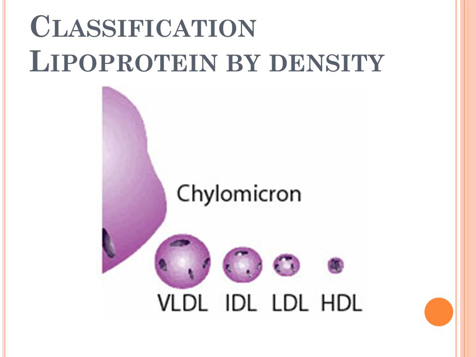 C LASSIFICATION L IPOPROTEIN BY DENSITY