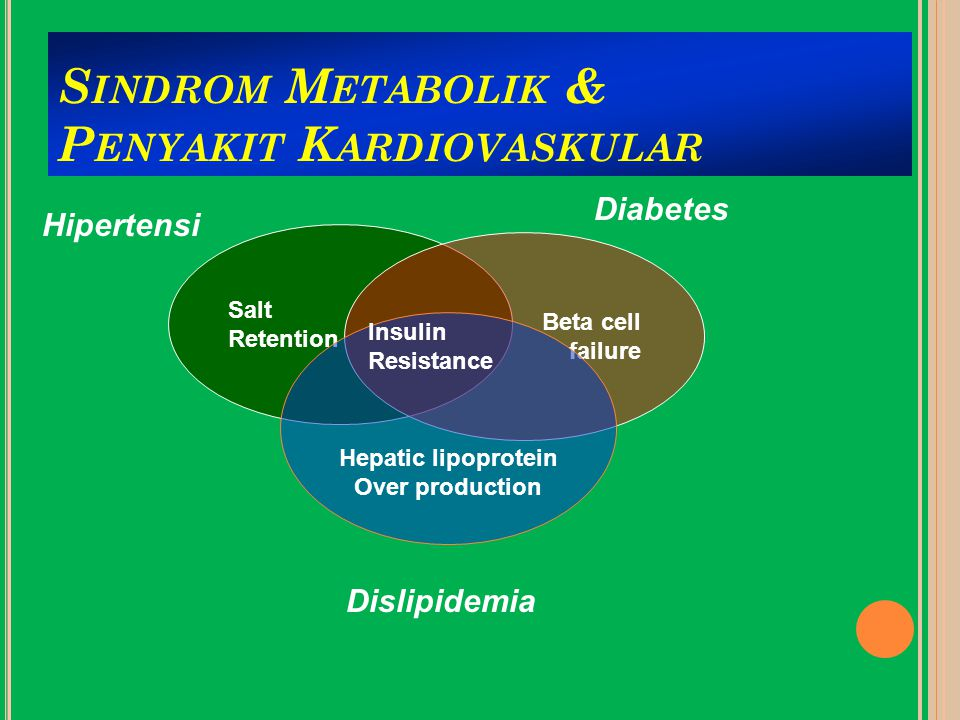 S INDROM M ETABOLIK & P ENYAKIT K ARDIOVASKULAR Salt Retention Beta cell failure Hepatic lipoprotein Over production Insulin Resistance Dislipidemia Diabetes Hipertensi