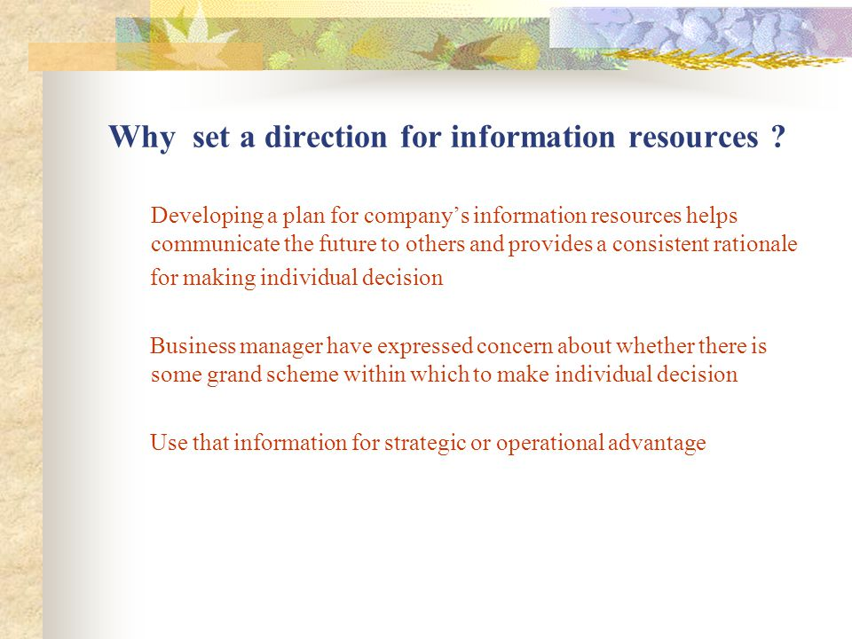 The outputs of the direction – setting process Information resources Assessment Includes inventorying and critically evaluating these resources in terms how well they are meeting the organization's business needs.