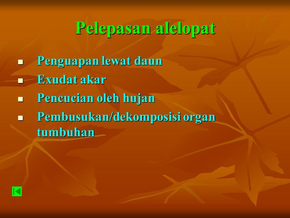 Beberapa cara untuk membuktikan bahwa suatu jenis tumbuhan menghasilkan alelopat Bioassay Bioassay Eksudat akar Eksudat akar Menguji pada pot bertingkat antara jenis gulma (donor) dengan tanaman (penerima) Menguji pada pot bertingkat antara jenis gulma (donor) dengan tanaman (penerima) Menguji pada pot bertingkat antara jenis gulma (donor) dengan tanaman (penerima) Menguji pada pot bertingkat antara jenis gulma (donor) dengan tanaman (penerima) Dengan cara mengeliminir (menghilangkan) pengaruh kompetisi.
