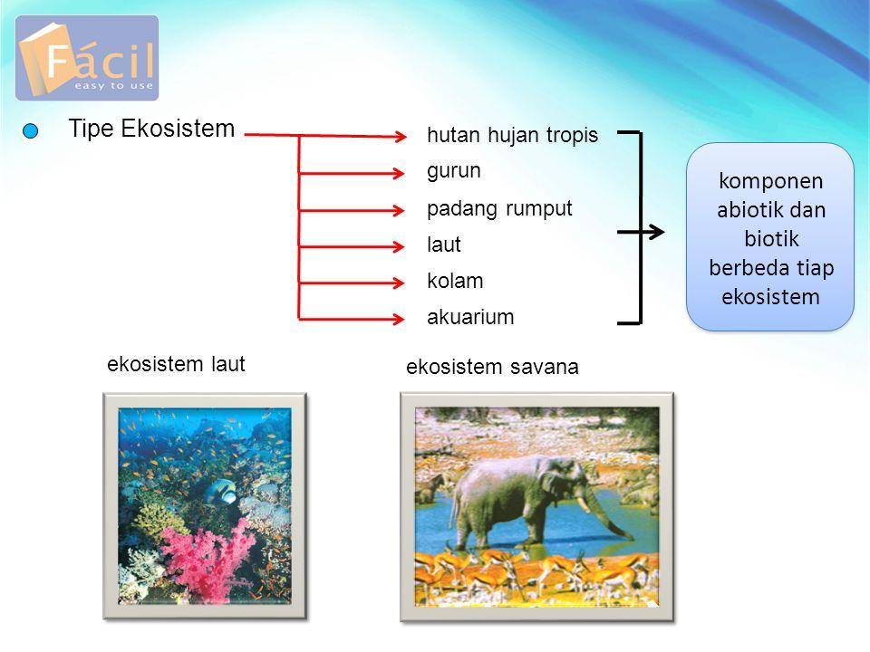 Inti sel Tipe Ekosistem hutan hujan tropis gurun padang rumput laut kolam akuarium komponen abiotik dan biotik berbeda tiap ekosistem ekosistem laut e