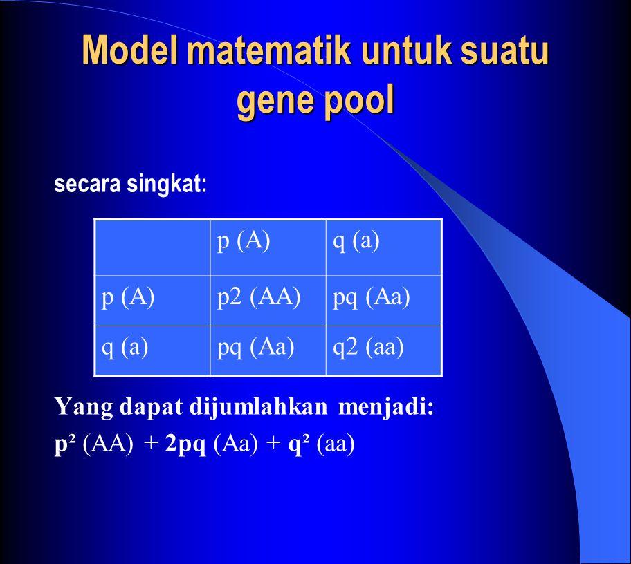 Model matematik untuk suatu gene pool secara singkat: Yang dapat dijumlahkan menjadi: p² (AA) + 2pq (Aa) + q² (aa) p (A)q (a) p (A)p2 (AA)pq (Aa) q (a)pq (Aa)q2 (aa)