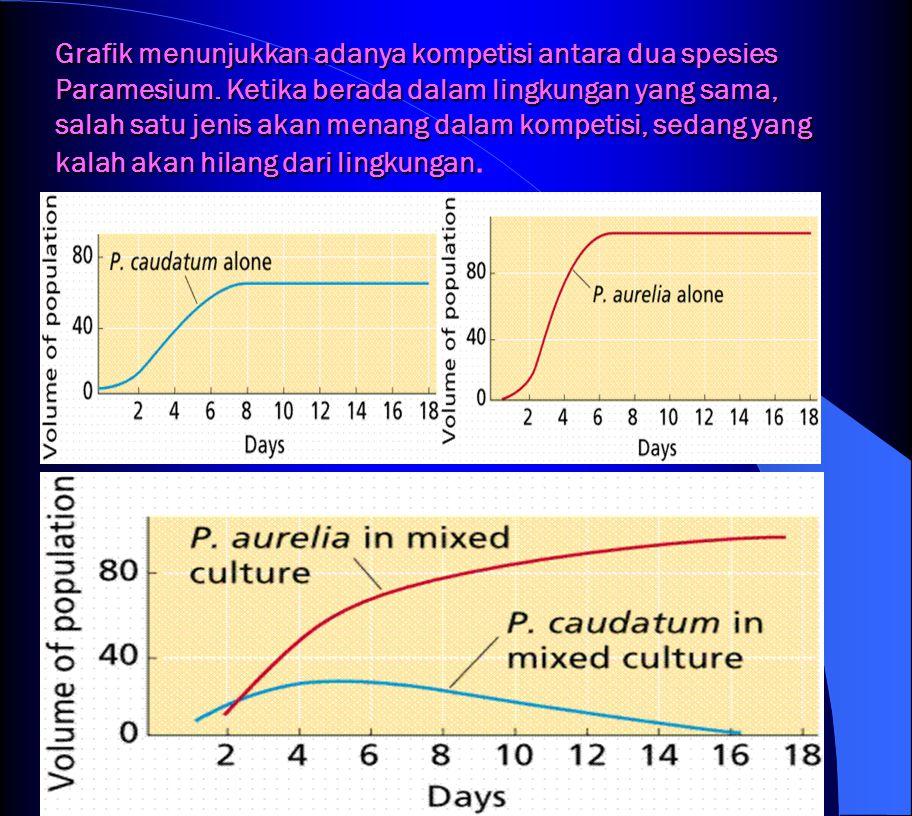 Grafik menunjukkan adanya kompetisi antara dua spesies Paramesium.