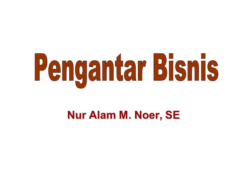 Nur Alam M. Noer, SE