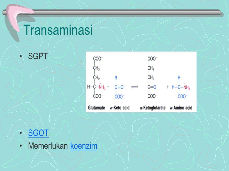 Transaminasi SGPT SGOT Memerlukan koenzimkoenzim