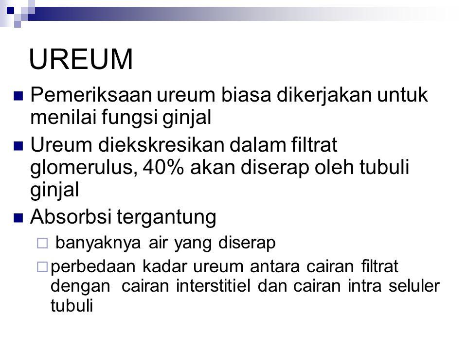 UREUM Pemeriksaan ureum biasa dikerjakan untuk menilai fungsi ginjal Ureum diekskresikan dalam filtrat glomerulus, 40% akan diserap oleh tubuli ginjal