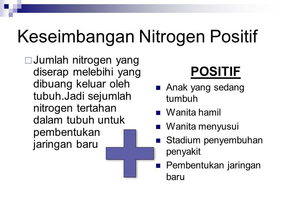 Keseimbangan Nitrogen Positif  Jumlah nitrogen yang diserap melebihi yang dibuang keluar oleh tubuh.Jadi sejumlah nitrogen tertahan dalam tubuh untuk
