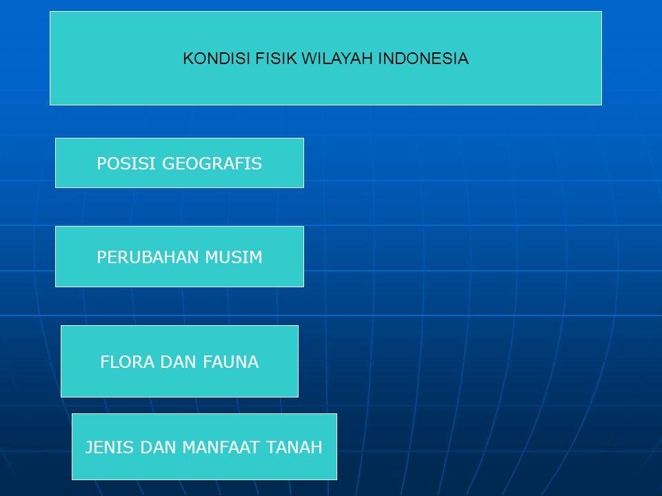 KONDISI FISIK WILAYAH INDONESIA POSISI GEOGRAFIS PERUBAHAN MUSIM FLORA DAN FAUNA JENIS DAN MANFAAT TANAH