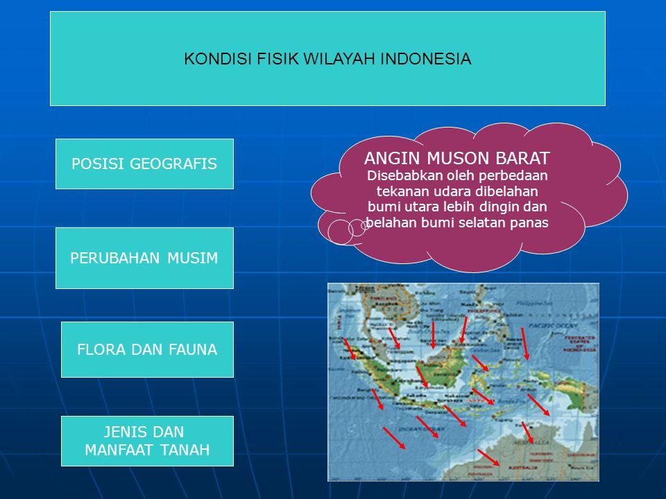 KONDISI FISIK WILAYAH INDONESIA POSISI GEOGRAFIS PERUBAHAN MUSIM FLORA DAN FAUNA JENIS DAN MANFAAT TANAH ANGIN MUSON BARAT Disebabkan oleh perbedaan tekanan udara dibelahan bumi utara lebih dingin dan belahan bumi selatan panas