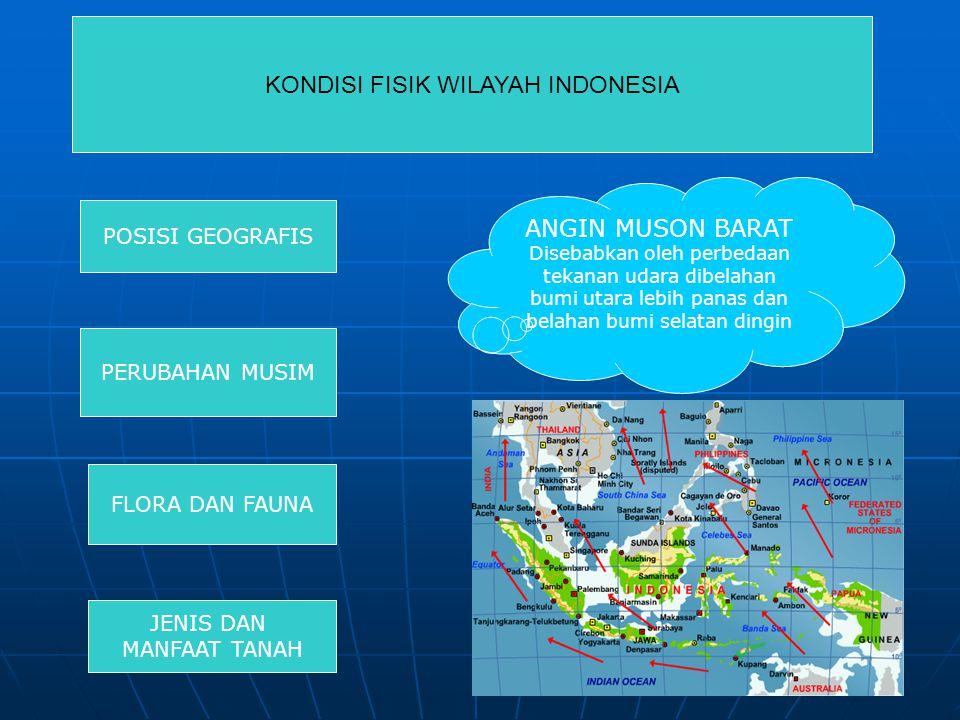 KONDISI FISIK WILAYAH INDONESIA POSISI GEOGRAFIS PERUBAHAN MUSIM FLORA DAN FAUNA JENIS DAN MANFAAT TANAH ANGIN MUSON BARAT Disebabkan oleh perbedaan tekanan udara dibelahan bumi utara lebih panas dan belahan bumi selatan dingin